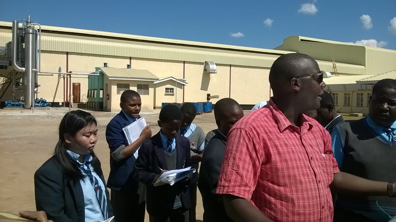 MalawiMangoes14